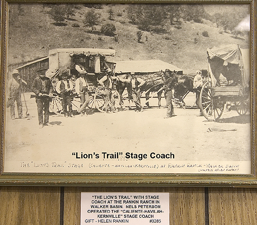 WB003 - Lion's Trail Coach.JPG